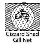 Gizzard Shad Gill Net